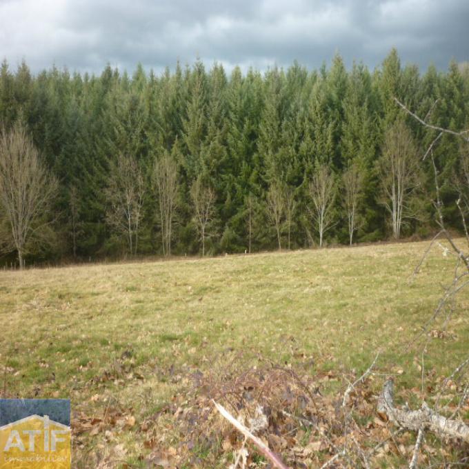 Offres de vente Terrain Chabreloche (63250)